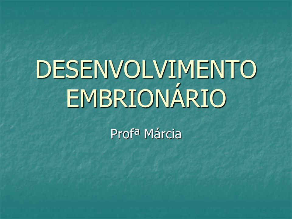 DESENVOLVIMENTO EMBRIONÁRIO Profª Márcia