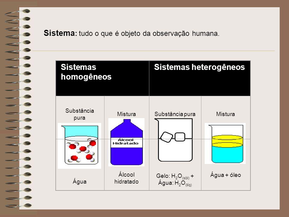 Sistema : tudo o que é objeto da observação humana.