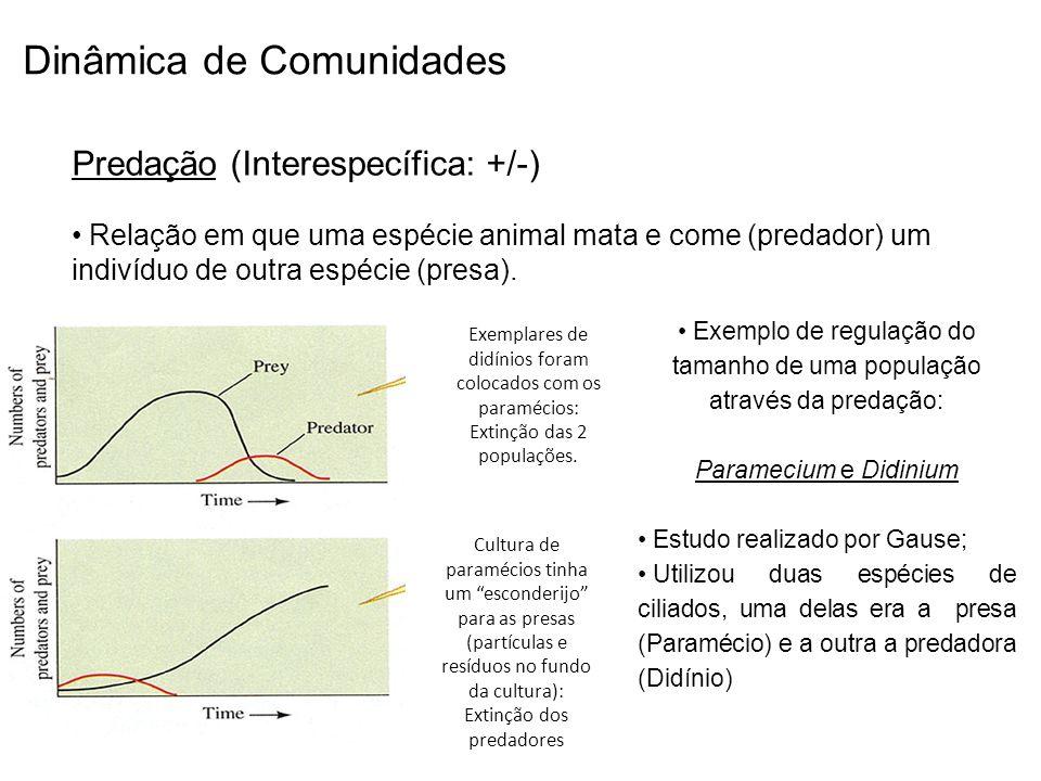 Dinâmica de Comunidades Predação (Interespecífica: +/-) Relação em que uma espécie animal mata e come (predador) um indivíduo de outra espécie (presa)