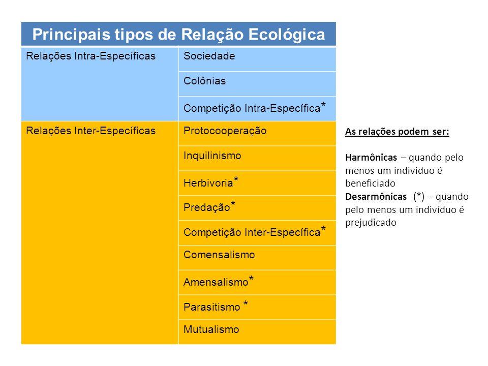 Principais tipos de Relação Ecológica Relações Intra-EspecíficasSociedade Colônias Competição Intra-Específica * Relações Inter-EspecíficasProtocooper