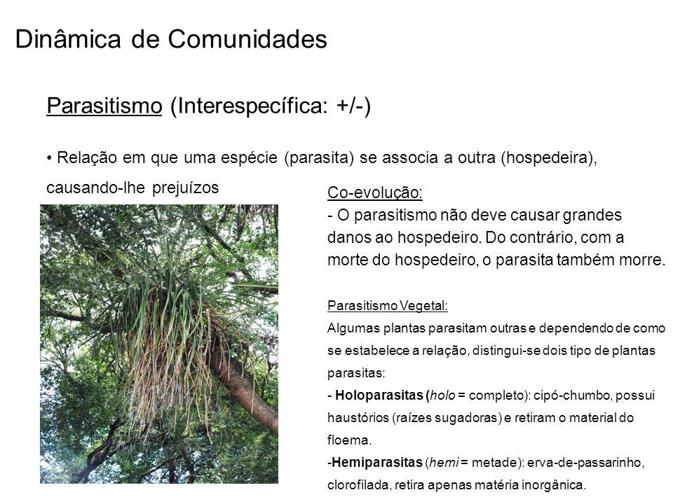 Dinâmica de Comunidades Parasitismo (Interespecífica: +/-) Relação em que uma espécie (parasita) se associa a outra (hospedeira), causando-lhe prejuíz