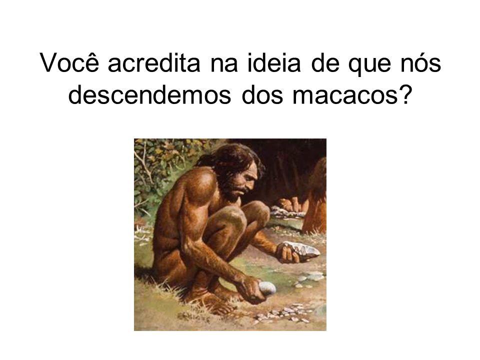 Você acredita na ideia de que nós descendemos dos macacos?