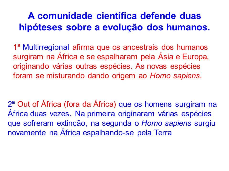 A comunidade científica defende duas hipóteses sobre a evolução dos humanos. 1ª Multirregional afirma que os ancestrais dos humanos surgiram na África