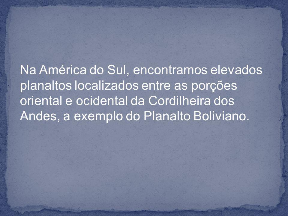 Na América do Sul, encontramos elevados planaltos localizados entre as porções oriental e ocidental da Cordilheira dos Andes, a exemplo do Planalto Bo