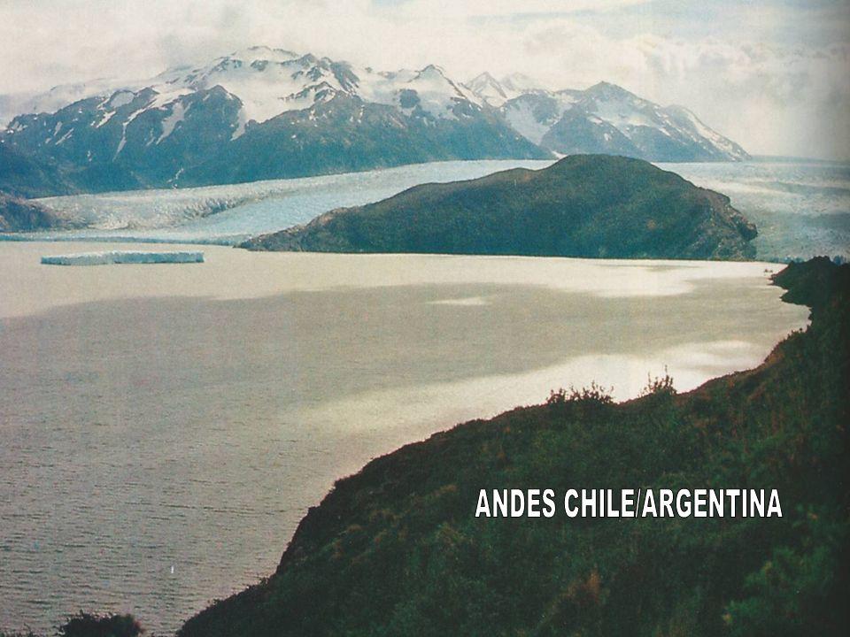 Junto à costa oeste do Canadá e dos Estados Unidos aparecem importantes formações: Cadeia da Costa, Cadeia da Cascata, Serra Nevada.