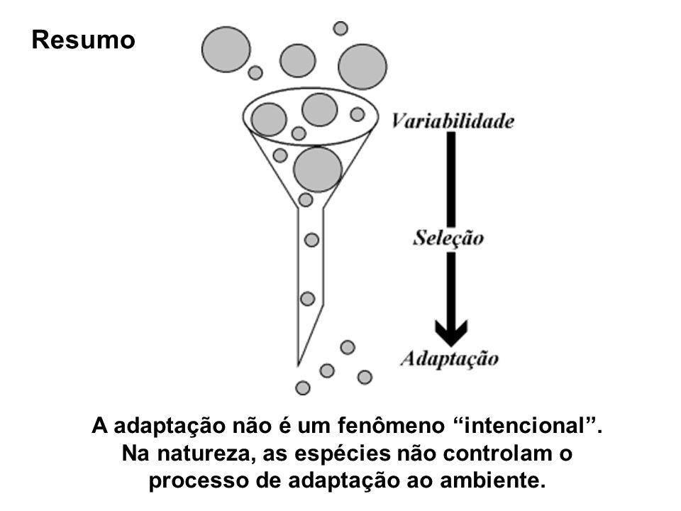 Resumo A adaptação não é um fenômeno intencional. Na natureza, as espécies não controlam o processo de adaptação ao ambiente.