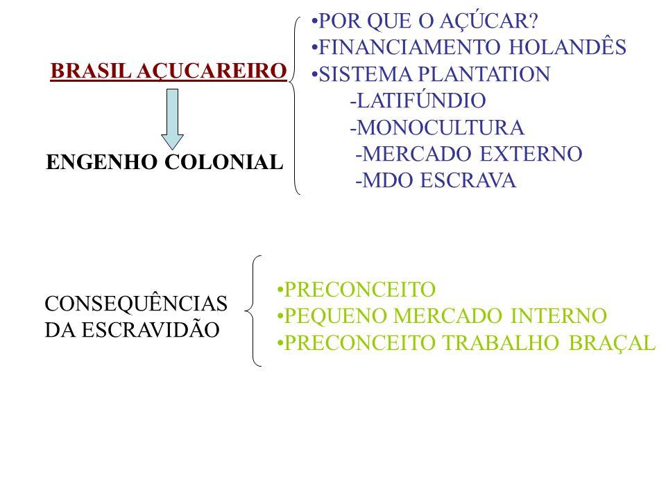 BRASIL AÇUCAREIRO POR QUE O AÇÚCAR? FINANCIAMENTO HOLANDÊS SISTEMA PLANTATION -LATIFÚNDIO -MONOCULTURA -MERCADO EXTERNO -MDO ESCRAVA ENGENHO COLONIAL