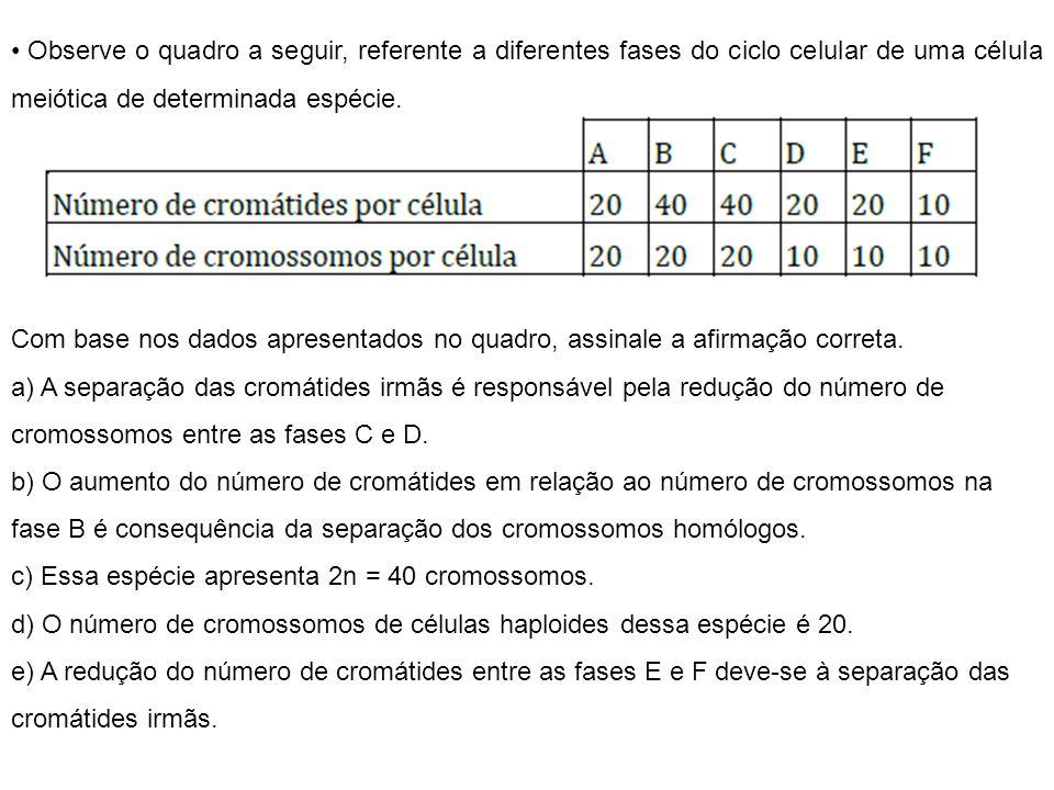 46 cromossomos paternos (2n) XY 46 cromossomos maternos (2n) XX Espermatozóide (n) (23 cromossomos) Óvulo (n) (23 cromossomos) 46 cromossomos (23 de origem paterna e 23 de origem materna) XX Noções de Divisão Celular