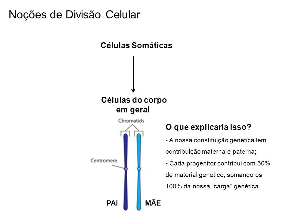 Células Somáticas Células do corpo em geral O que explicaria isso? - A nossa constituição genética tem contribuição materna e paterna; - Cada progenit