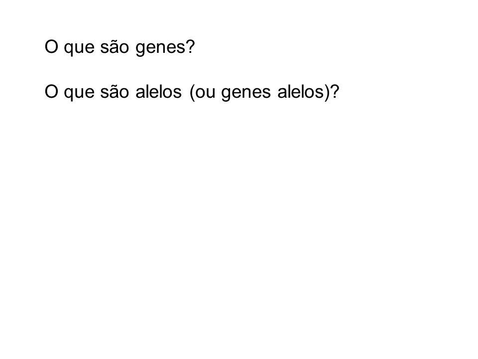 O que são genes? O que são alelos (ou genes alelos)?