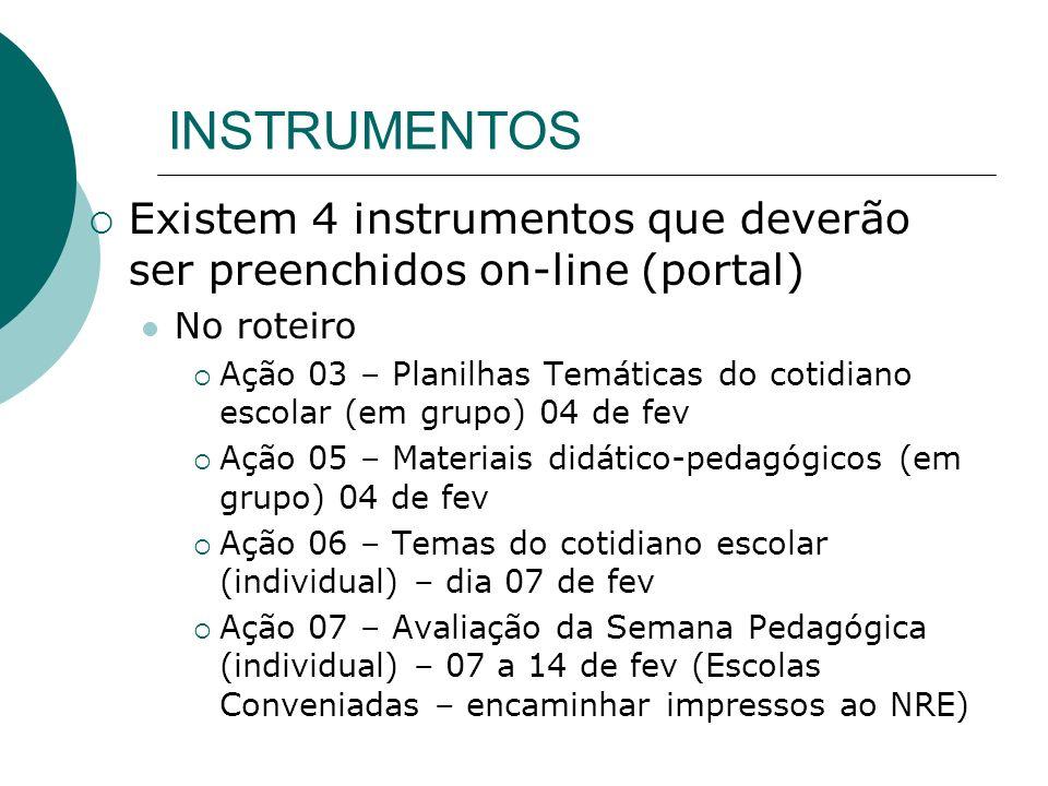 INSTRUMENTOS Existem 4 instrumentos que deverão ser preenchidos on-line (portal) No roteiro Ação 03 – Planilhas Temáticas do cotidiano escolar (em gru