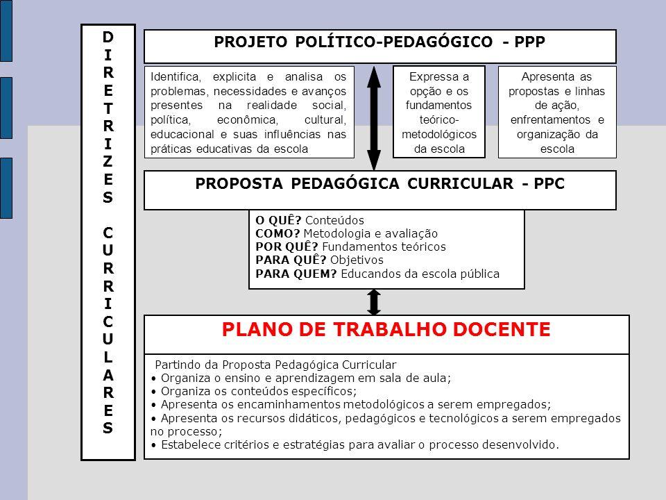 PROJETO POLÍTICO-PEDAGÓGICO - PPP DIRETRIZESCURRICULARESDIRETRIZESCURRICULARES Identifica, explicita e analisa os problemas, necessidades e avanços pr
