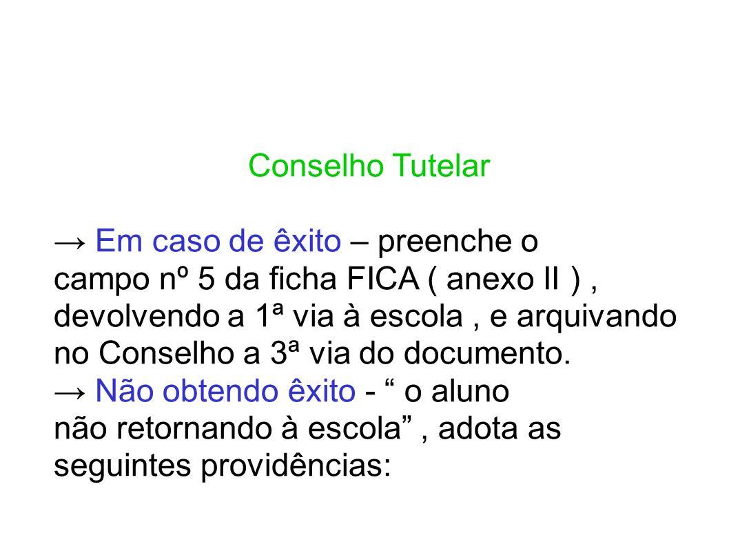 Conselho Tutelar Em caso de êxito – preenche o campo nº 5 da ficha FICA ( anexo II ), devolvendo a 1ª via à escola, e arquivando no Conselho a 3ª via