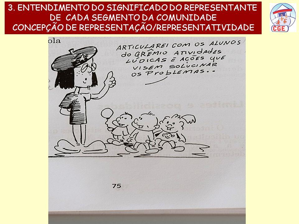 3. ENTENDIMENTO DO SIGNIFICADO DO REPRESENTANTE DE CADA SEGMENTO DA COMUNIDADE CONCEPÇÃO DE REPRESENTAÇÃO/REPRESENTATIVIDADE