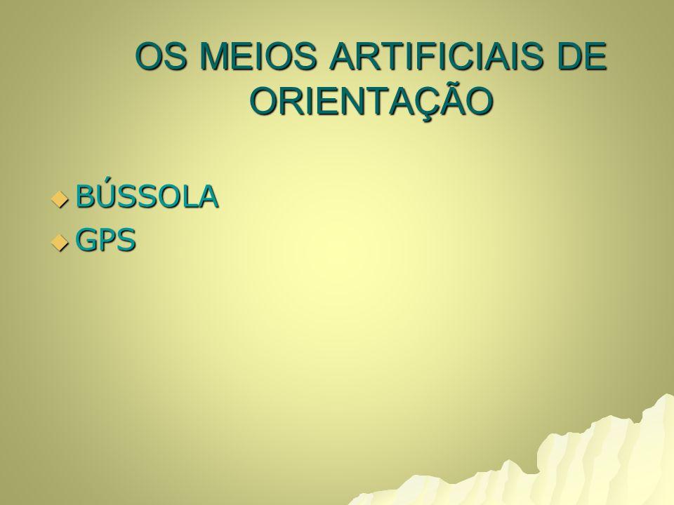 OS MEIOS ARTIFICIAIS DE ORIENTAÇÃO BÚSSOLA BÚSSOLA GPS GPS