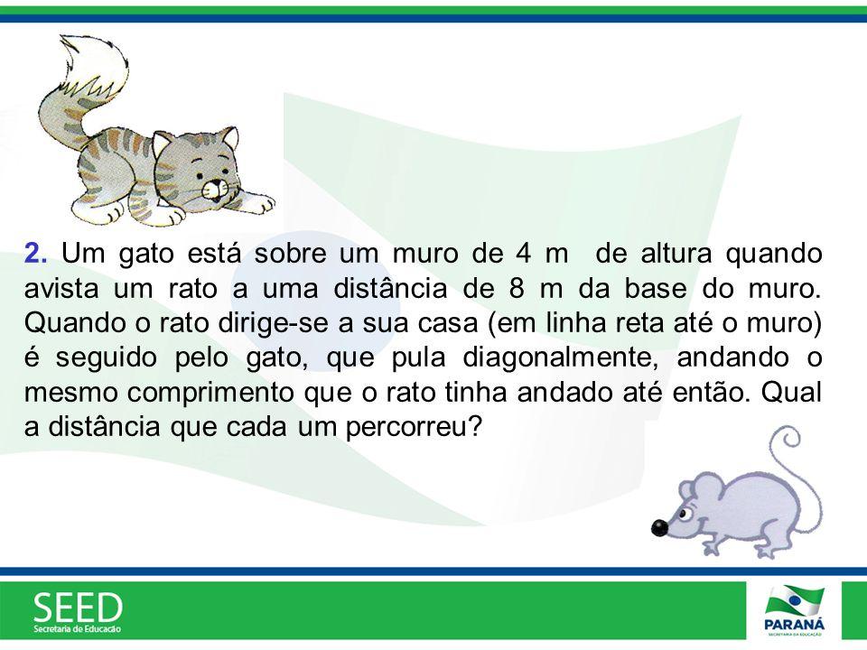 2. Um gato está sobre um muro de 4 m de altura quando avista um rato a uma distância de 8 m da base do muro. Quando o rato dirige-se a sua casa (em li