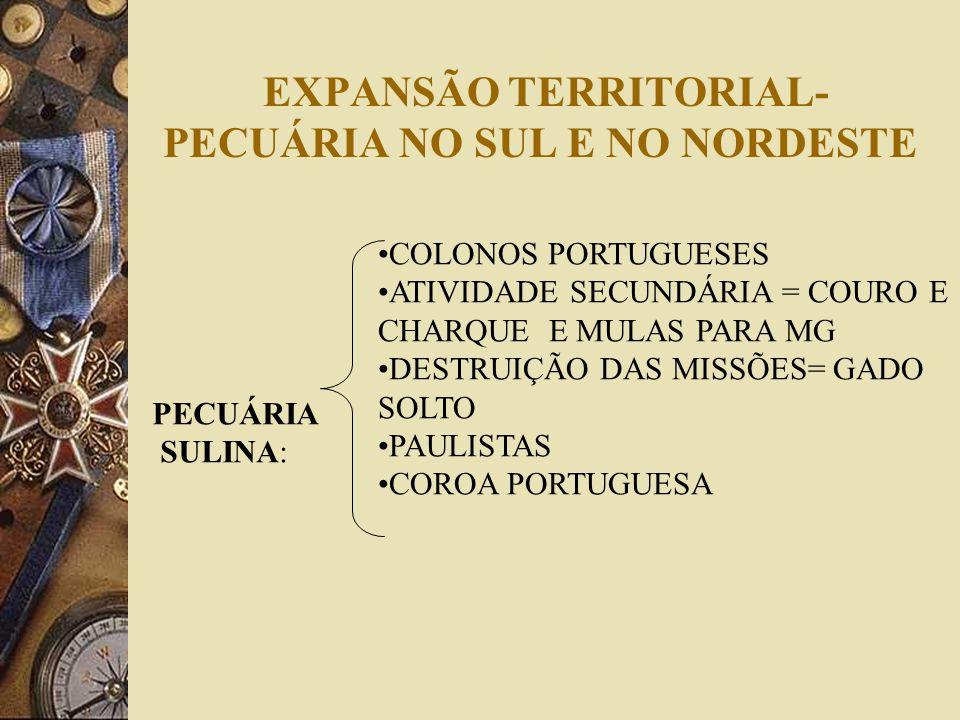 EXPANSÃO TERRITORIAL- PECUÁRIA NO SUL E NO NORDESTE PECUÁRIA SULINA: COLONOS PORTUGUESES ATIVIDADE SECUNDÁRIA = COURO E CHARQUE E MULAS PARA MG DESTRU