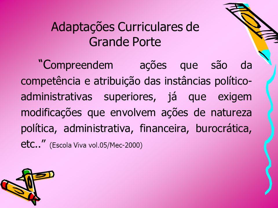 Adaptações Curriculares de Grande Porte C ompreendem ações que são da competência e atribuição das instâncias político- administrativas superiores, já