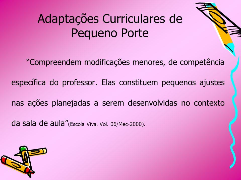 Adaptações Curriculares de Pequeno Porte Compreendem modificações menores, de competência específica do professor. Elas constituem pequenos ajustes na