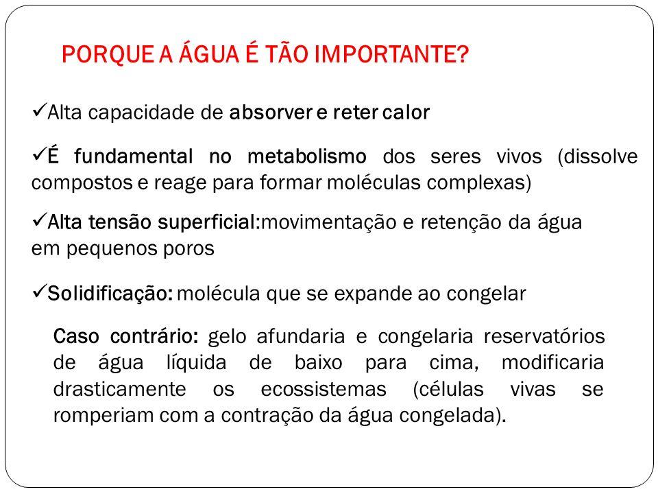 PORQUE A ÁGUA É TÃO IMPORTANTE? Alta capacidade de absorver e reter calor É fundamental no metabolismo dos seres vivos (dissolve compostos e reage par