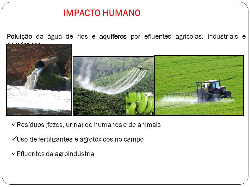 Poluição da água de rios e aquíferos por efluentes agrícolas, industriais e domésticos IMPACTO HUMANO Resíduos (fezes, urina) de humanos e de animais