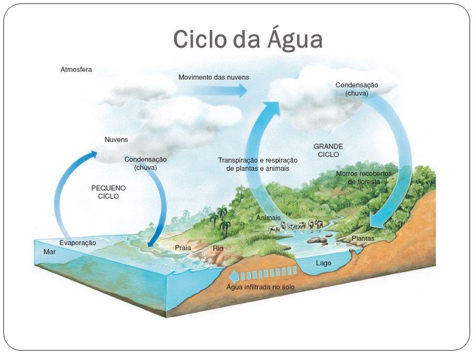 Ciclo do Carbono 1.