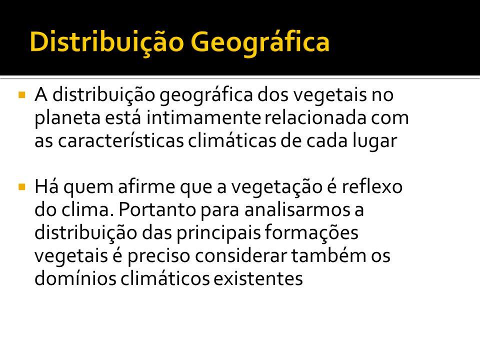 A distribuição geográfica dos vegetais no planeta está intimamente relacionada com as características climáticas de cada lugar Há quem afirme que a ve
