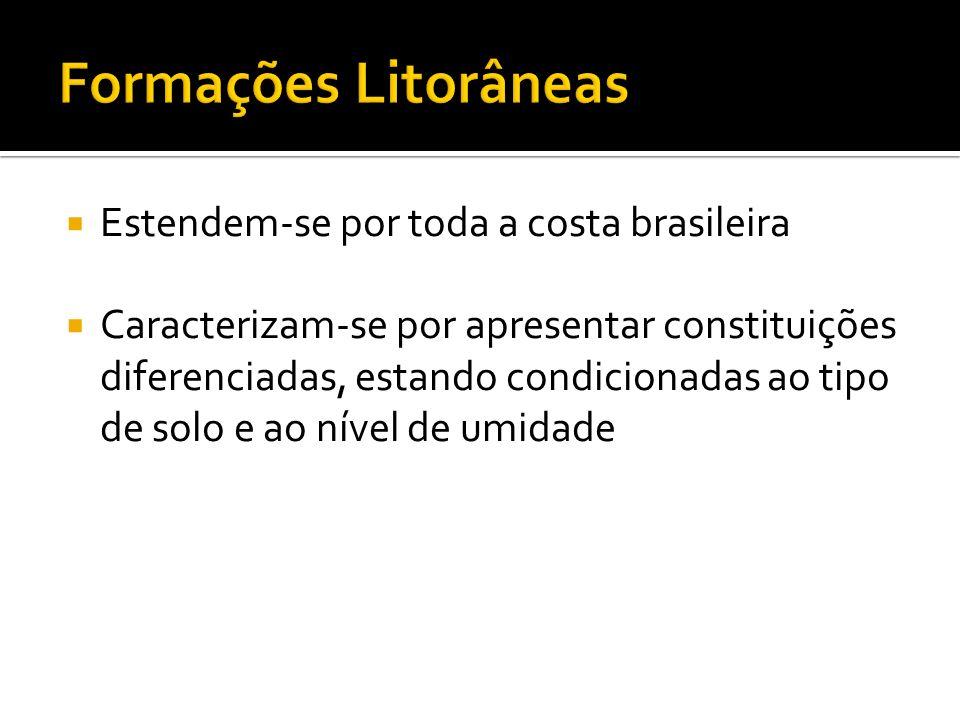 Estendem-se por toda a costa brasileira Caracterizam-se por apresentar constituições diferenciadas, estando condicionadas ao tipo de solo e ao nível d