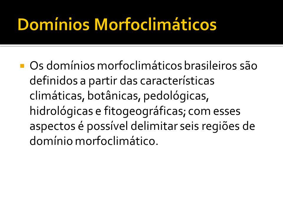 Os domínios morfoclimáticos brasileiros são definidos a partir das características climáticas, botânicas, pedológicas, hidrológicas e fitogeográficas;