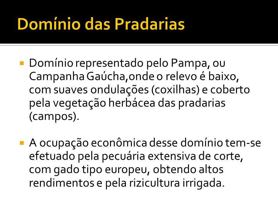 Domínio representado pelo Pampa, ou Campanha Gaúcha,onde o relevo é baixo, com suaves ondulações (coxilhas) e coberto pela vegetação herbácea das prad