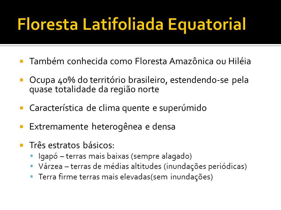 Os domínios morfoclimáticos brasileiros são definidos a partir das características climáticas, botânicas, pedológicas, hidrológicas e fitogeográficas; com esses aspectos é possível delimitar seis regiões de domínio morfoclimático.