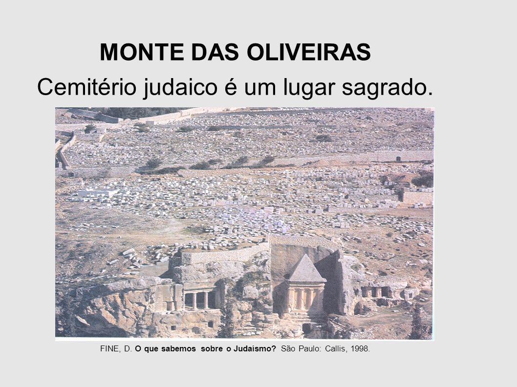 MONTE DAS OLIVEIRAS Cemitério judaico é um lugar sagrado. FINE, D. O que sabemos sobre o Judaísmo? São Paulo: Callis, 1998.