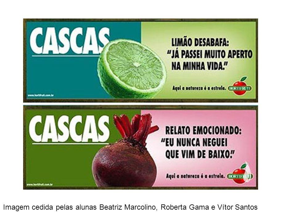 Imagem cedida pelas alunas Beatriz Marcolino, Roberta Gama e Vítor Santos
