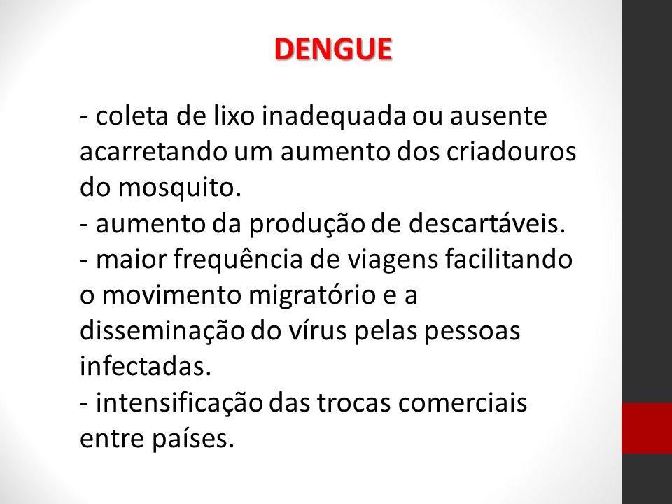 - coleta de lixo inadequada ou ausente acarretando um aumento dos criadouros do mosquito. - aumento da produção de descartáveis. - maior frequência de