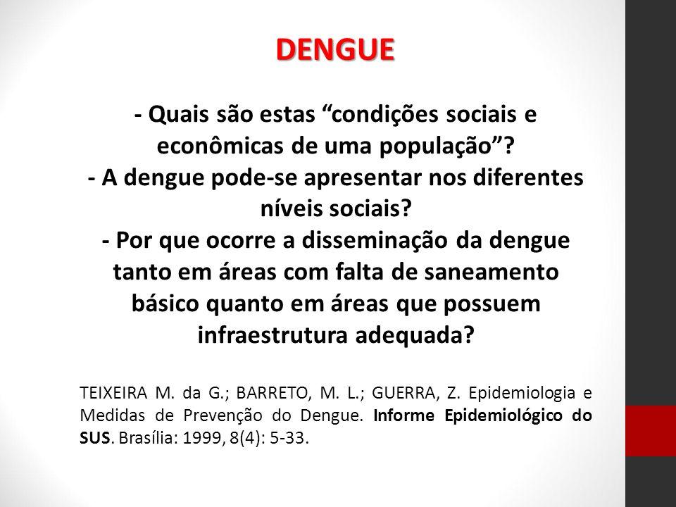 - Quais são estas condições sociais e econômicas de uma população? - A dengue pode-se apresentar nos diferentes níveis sociais? - Por que ocorre a dis