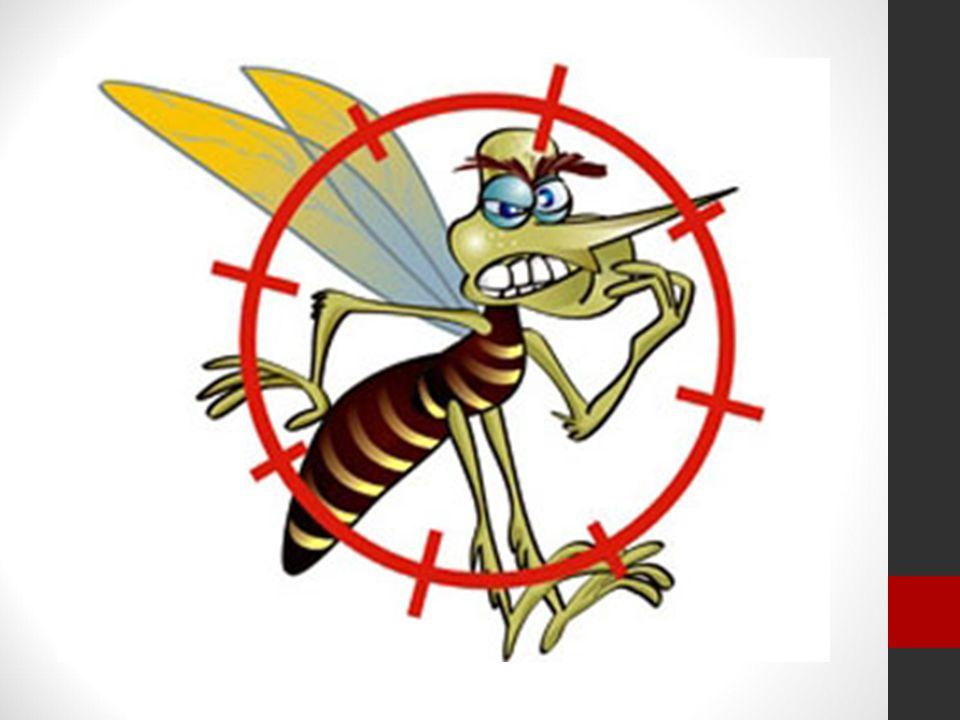- maior rapidez dos meios de transporte levando à dispersão do Aedes aegypti para lugares cada vez mais distantes.