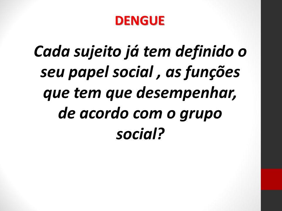 Cada sujeito já tem definido o seu papel social, as funções que tem que desempenhar, de acordo com o grupo social? DENGUE