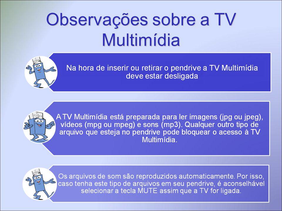 Observações sobre a TV Multimídia