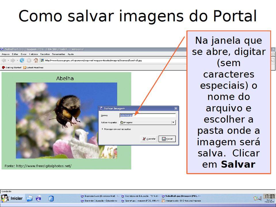 Como salvar imagens do 1º Clico em Imagens 2º Digito o nome ou assunto que quero pesquisar e clico em Pesquisa Google.