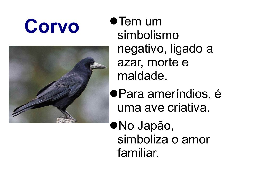 Corvo Tem um simbolismo negativo, ligado a azar, morte e maldade. Para ameríndios, é uma ave criativa. No Japão, simboliza o amor familiar.