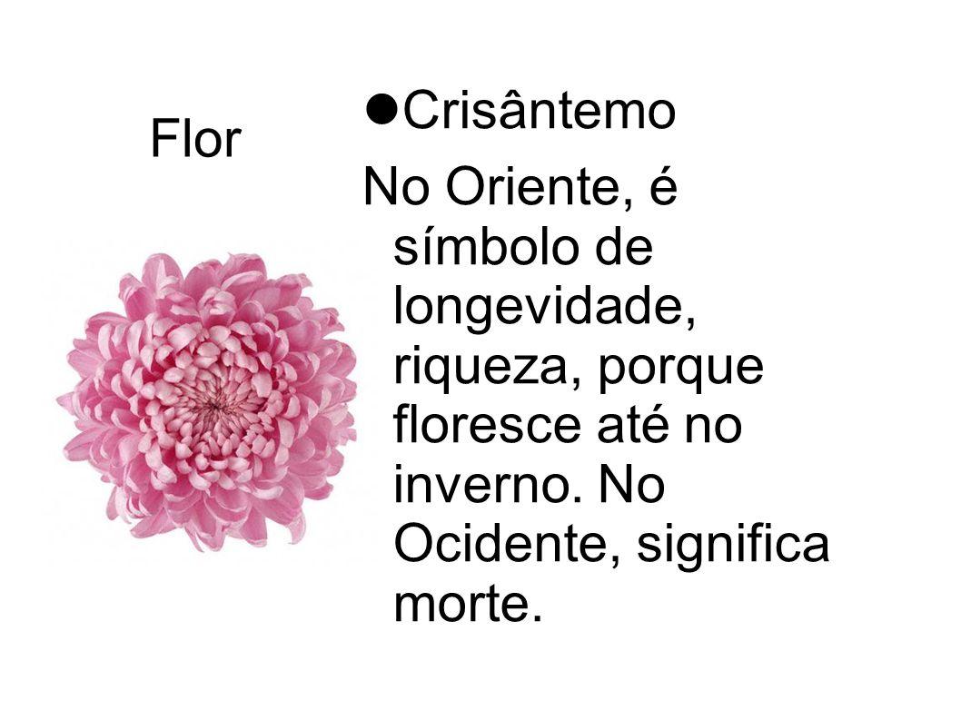 Flor Crisântemo No Oriente, é símbolo de longevidade, riqueza, porque floresce até no inverno. No Ocidente, significa morte.