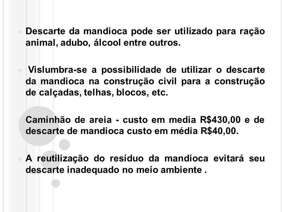 Descarte da mandioca pode ser utilizado para ração animal, adubo, álcool entre outros.