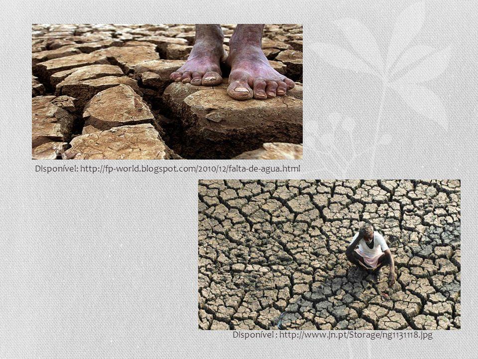 Disponível : http://www.jn.pt/Storage/ng1131118.jpg Disponível: http://fp-world.blogspot.com/2010/12/falta-de-agua.html