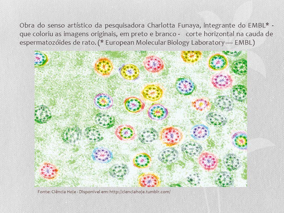 Fonte: Ciência Hoje - Disponível em: http://cienciahoje.tumblr.com/ Obra do senso artístico da pesquisadora Charlotta Funaya, integrante do EMBL* - qu