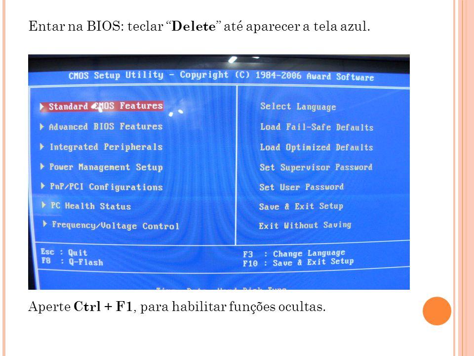 Entar na BIOS: teclar Delete até aparecer a tela azul.