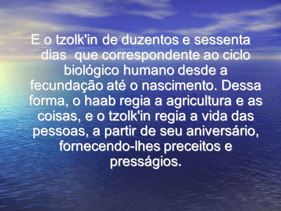 E o tzolk'in de duzentos e sessenta dias que correspondente ao ciclo biológico humano desde a fecundação até o nascimento. Dessa forma, o haab regia a