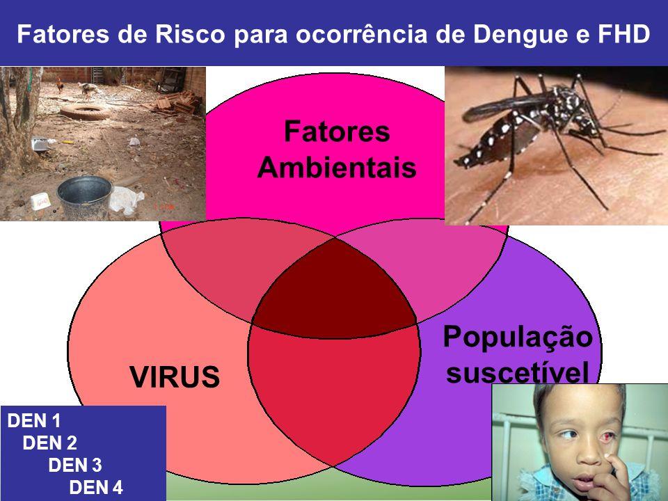 Fatores de Risco para ocorrência de Dengue e FHD População suscetível DEN 1 DEN 2 DEN 3 DEN 4 VIRUS Fatores Ambientais