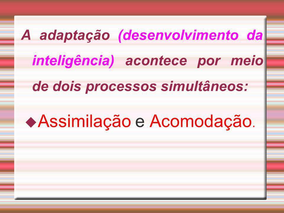 A adaptação (desenvolvimento da inteligência) acontece por meio de dois processos simultâneos: Assimilação e Acomodação.
