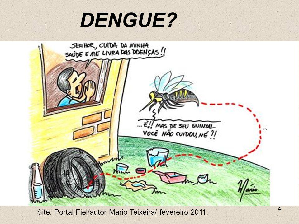 4 Site: Portal Fiel/autor Mario Teixeira/ fevereiro 2011. DENGUE?