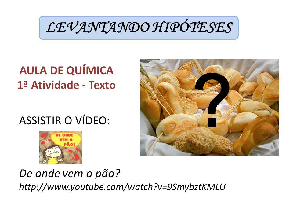 LEVANTANDO HIPÓTESES ASSISTIR O VÍDEO: De onde vem o pão? http://www.youtube.com/watch?v=9SmybztKMLU AULA DE QUÍMICA 1ª Atividade - Texto ?
